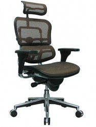 EUROTECH- ERGOHUMAN Excectuive Mesh Chair with Headrest