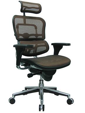 EUROTECH- ERGOHUMAN Excectuive Mesh Chair with Headrest