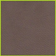 LATTE COLOR SAMPLE-800×800